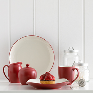 Colorwave Raspberry 16pce Dinner Set